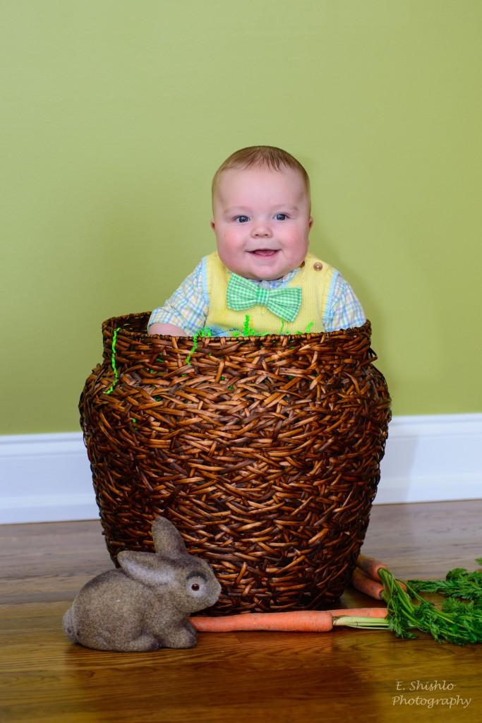 Timmy basket bunny